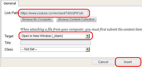 Paste Hyperlink into the Link Path box. Set Target as Open in New Window. Click Insert