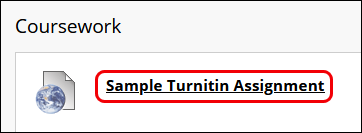 The Coursework page, highlighting the Turnitin assignment